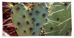 Beach Towel featuring the photograph Prickly Pear Heart 1 by Dawn Richards