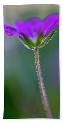 Beach Towel featuring the photograph Purple Flower by John Rodrigues