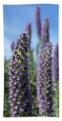 Purple Hyssop  Beach Towel
