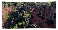 Red-and-green Macaws, Jardim, Mato Grosso Do Sul, Brazil Beach Towel