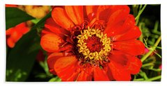 Red And Yellow Stunner Beach Towel