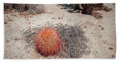 Red Barrel Cactus And Mesquite Beach Towel