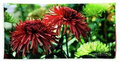 Red Chrysanthemums Beach Sheet