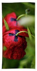 Red Corn Poppy Flowers With Dew Drops Beach Towel