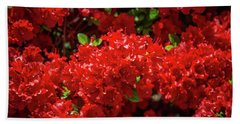 Red Flowers Beach Sheet
