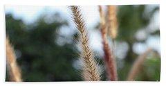 Red Grass - Pennisetum Setaceum 'rubrum' Beach Towel