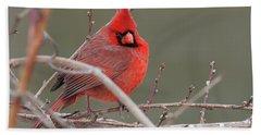 Red In Winter Beach Sheet