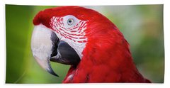 Red Macaw Beach Towel
