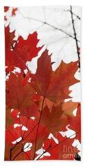 Red Maple Leaves 2 Beach Towel
