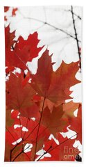 Red Maple Leaves 2 Beach Sheet
