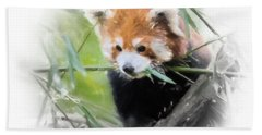 Red Panda Beach Sheet