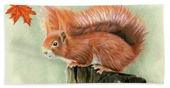 Red Squirrel In Autumn Beach Towel
