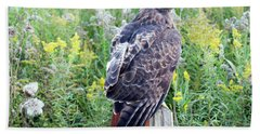 Red-tailed Hawk On Fence Post Beach Towel