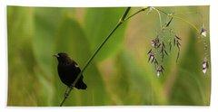 Red-winged Blackbird On Alligator Flag Beach Towel