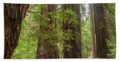 Redwood Pathway Muir Woods California Beach Towel