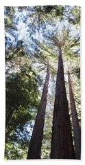 Redwoods, Blue Sky Beach Towel