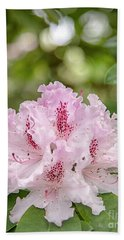 Rhododendron Pink Flower Blooms Beach Towel