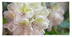 Rhododendron White Flower Blooms Beach Towel