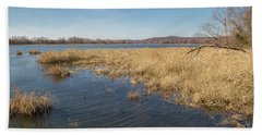 River Grass Beach Sheet