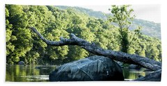River Tree Beach Towel