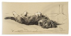 Rough Daschund Puppy Detail, 1930 Beach Towel
