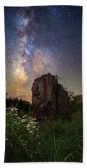 Beach Towel featuring the photograph Royalty  by Aaron J Groen
