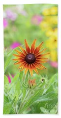 Rudbeckia Cappuccino Flower Beach Sheet