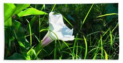 Beach Towel featuring the photograph Sacred Datura - Fairy Flower by Judy Kennedy