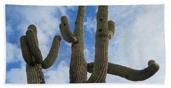 Saguaro Clique Beach Sheet