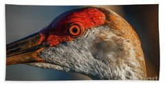 Beach Towel featuring the photograph Sandhill Close Up Portrait by Tom Claud