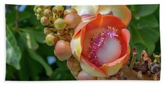 Sara Tree Or Cannonball Tree Flower And Buds Dthn0264 Beach Towel