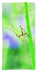 Say Hello To My Little Green Insect Friend Beach Towel