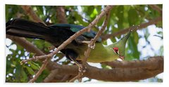 Schalow's Turaco Beach Towel