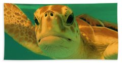 Sea Turtle Off The Mexican Coast - Dwp2086549 Beach Towel