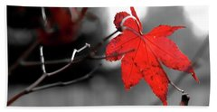 Selective Red Maple Leaf Beach Towel