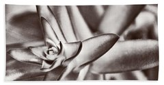 Beach Towel featuring the photograph Sensual Succulent II by Leda Robertson