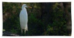 Shadow Heron Beach Towel