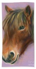 Shaggy Brown Pony Beach Sheet