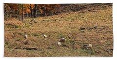 Beach Sheet featuring the photograph Sheep In A Field by Angela Murdock