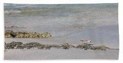 Shorebird Beach Towel
