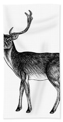 Sika Deer Stag - Ink Illustration Beach Towel