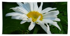 Beach Towel featuring the photograph Simple Perfection by Rosanne Licciardi