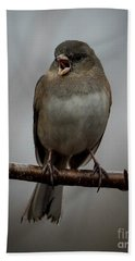 Singing Junco 1 Beach Towel