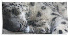 Sleeping Cheetah Beach Towel