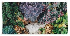 Beach Towel featuring the photograph Small Succulent Garden by Top Wallpapers