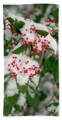 Snow Covered Winter Berries Beach Towel