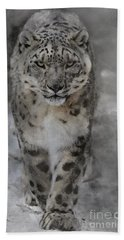 Beach Towel featuring the photograph Snow Leopard II by Brad Allen Fine Art