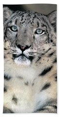 Snow Leopard Portrait Endangered Species Wildlife Rescue Beach Towel