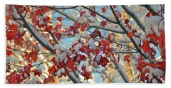 Snow On Maple Leaves Beach Towel