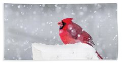 Beach Towel featuring the photograph Snowy Cardinal by Lori Coleman